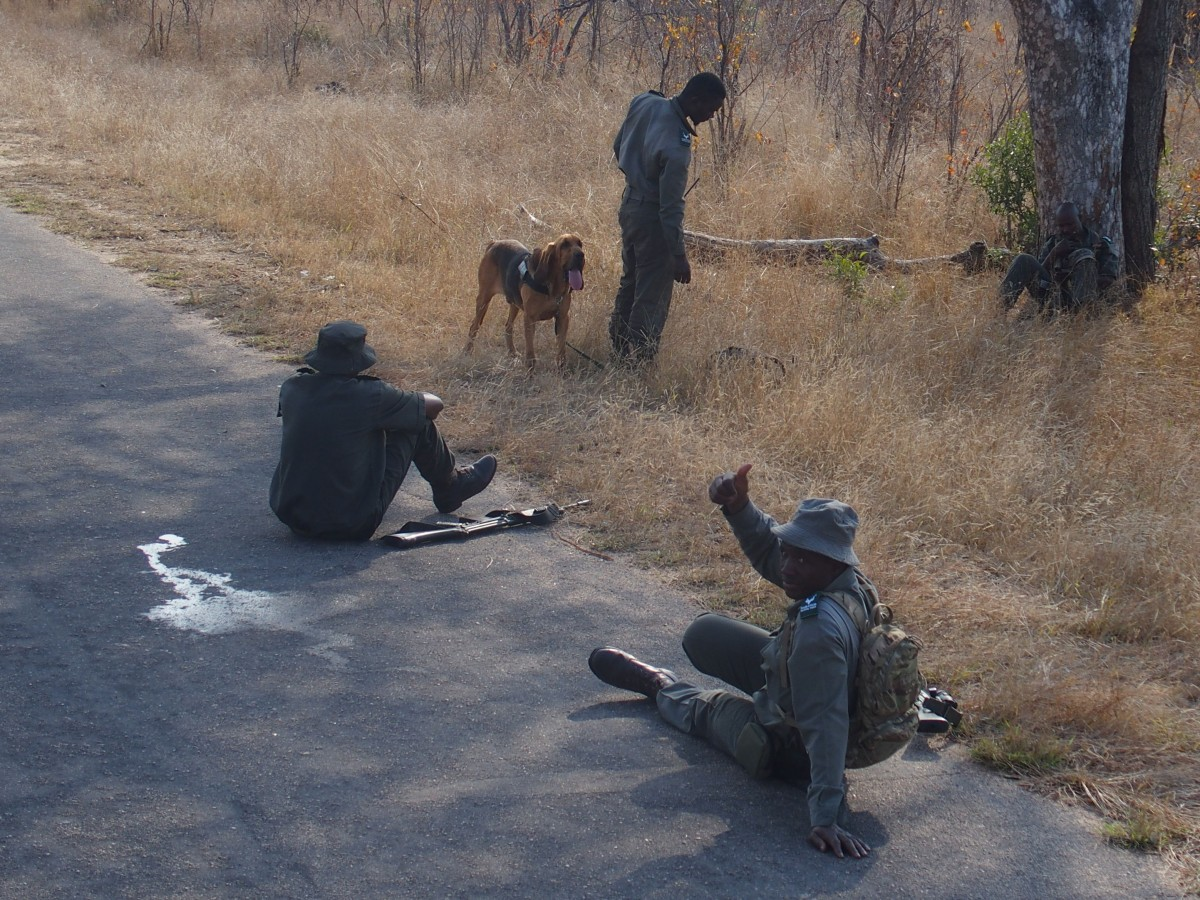 Anti-Poaching Unit