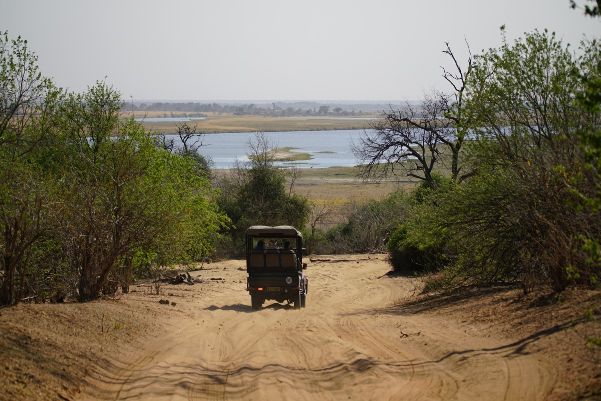 Weg durch den Chobe-Nationalpark
